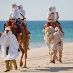 Camel Ride in Cabo