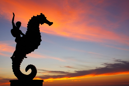 Puerto Vallarta - Seahorse sculpture