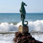 Puerto Vallarta's top beaches