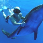 Mexico Vacations – Swimming with Dolphins