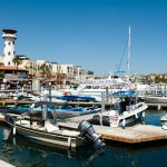Get to Know the Marina in Cabo