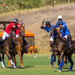 Visit La Patrona Polo & Equestrian Club on the Weekends