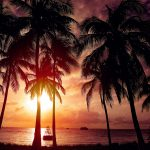 Cancun Events: Riviera Jazz Festival
